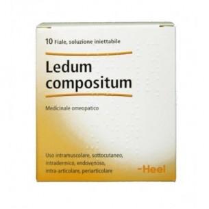 heel - Ledum Compositum 10 fiale 2,2 ml